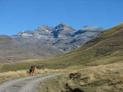 Añisclo – Ruta 3: Bestué – San Vicenda – Fon Blanca