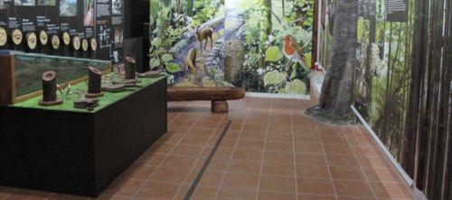 Centro de Interpretación del Parque Posets-Maladeta en San Juan de PLan