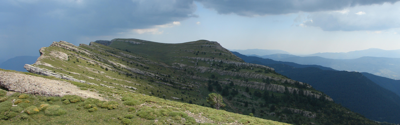 9ª Carrera por Montaña Peña Canciás